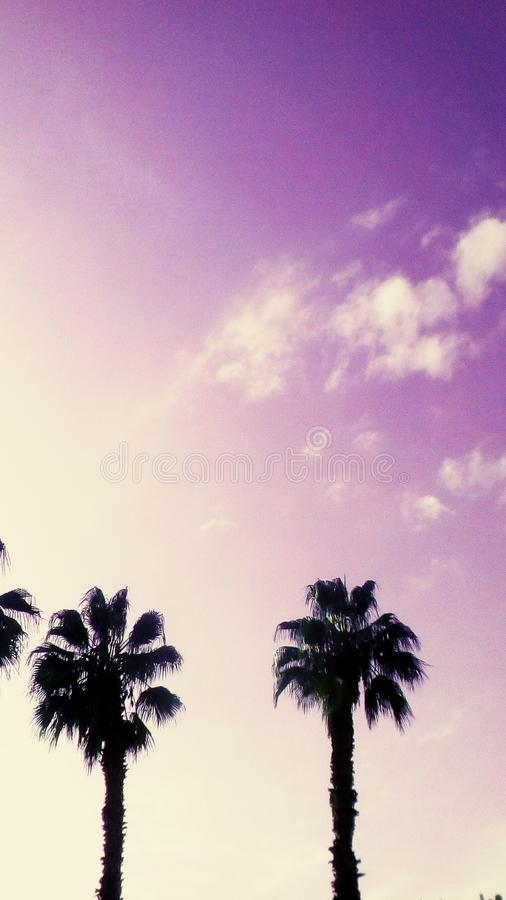 Download Landskap fotografering för bildbyråer. Bild av tropiskt - 106837193