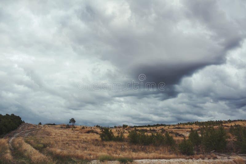 Landskap av ängen royaltyfri fotografi
