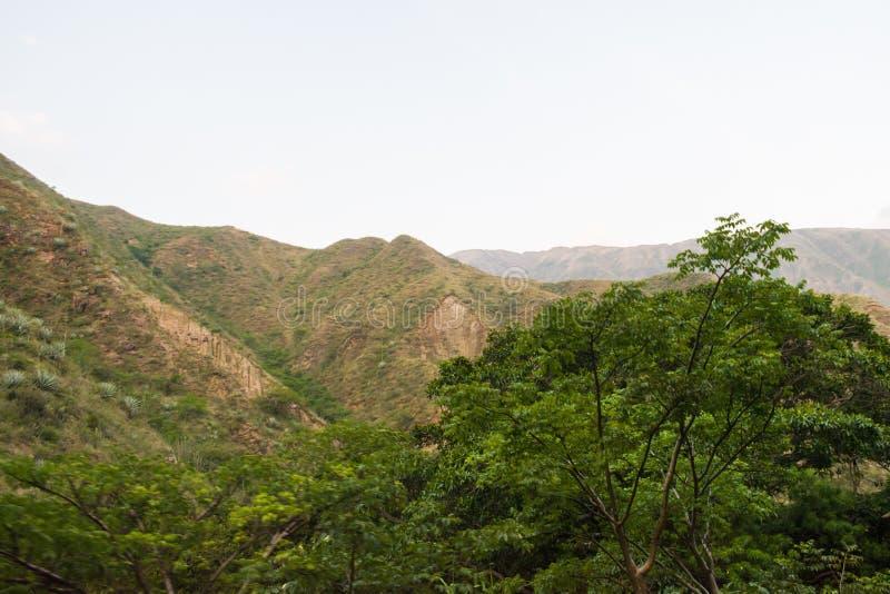 LANDSKAP AV BERGEN SOM OMGER CHICAMOCHA-KANJONEN I COLOMBIA MED GRÖN VEGETATION OCH TRÄD royaltyfri foto