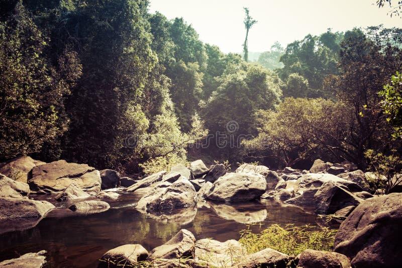 Landskap av bergfloden Mandovi på den Dudhsagar vattenfallet royaltyfri foto