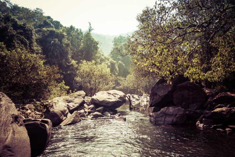 Landskap av bergfloden Mandovi på den Dudhsagar vattenfallet arkivbilder