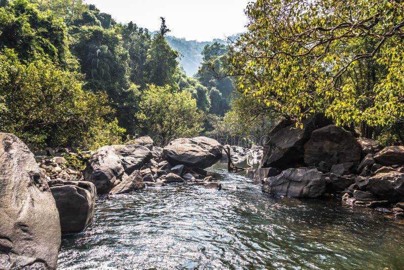 Landskap av bergfloden Mandovi på den Dudhsagar vattenfallet royaltyfri fotografi