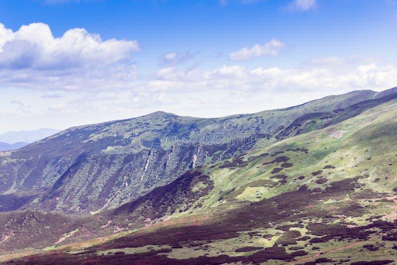 Landskap av Carpathians berg royaltyfria bilder