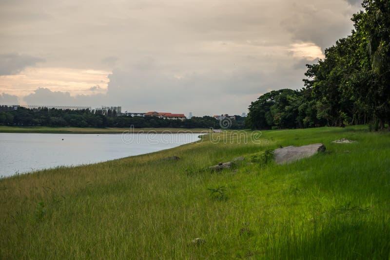 Landskap av dammet i stor behållare i Thailand royaltyfria bilder