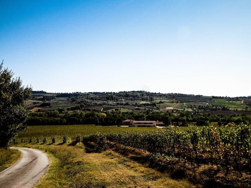 Landskap av de Tuscan vingårdarna, Chiantiregion, Italien royaltyfri bild