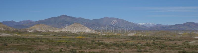 Landskap av den Atacama öknen i Chile arkivbilder
