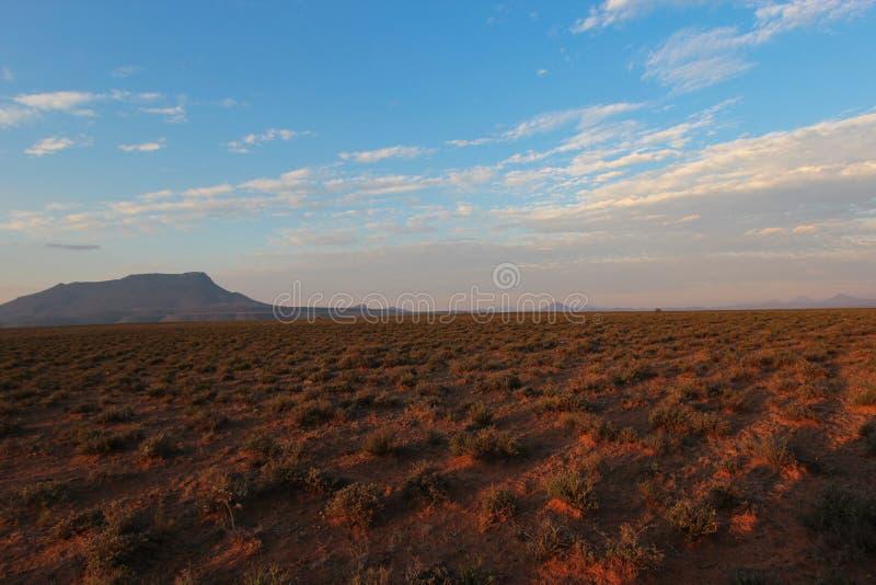 Landskap av den Camdeboo nationalparken under solnedgången i Sydafrika arkivbilder