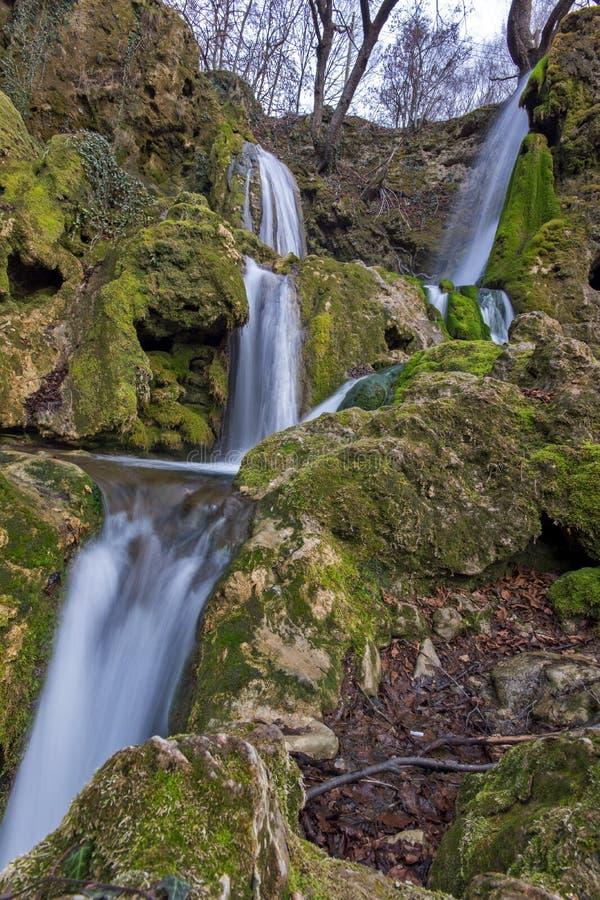 Landskap av den djupa skogvattenfallet nära by av Bachkovo, Bulgarien royaltyfri fotografi
