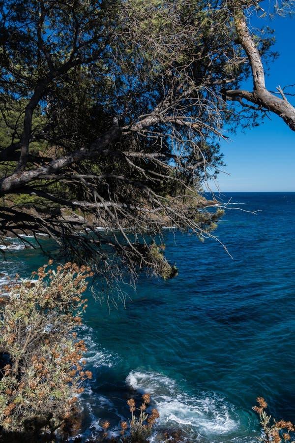 Landskap av den franska Rivieraen arkivbilder