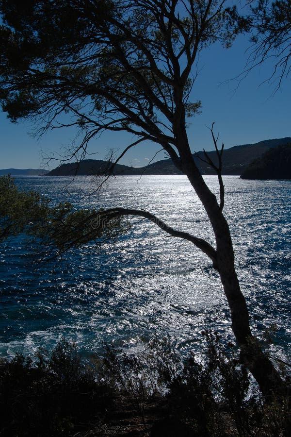 Landskap av den franska Rivieraen royaltyfri fotografi