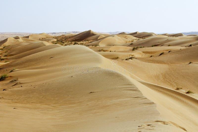 Landskap av den tomma fjärdedelen, Rubal Khali Desert royaltyfria foton