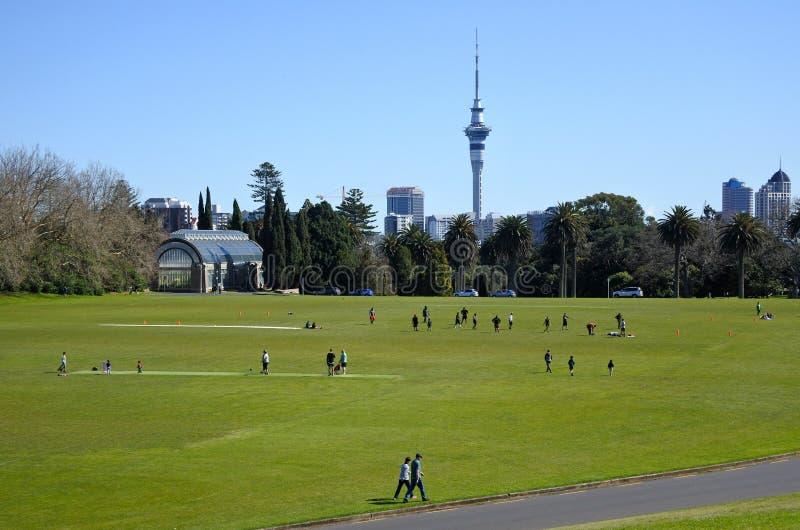 Landskap av det Auckland området Nya Zeeland arkivbild