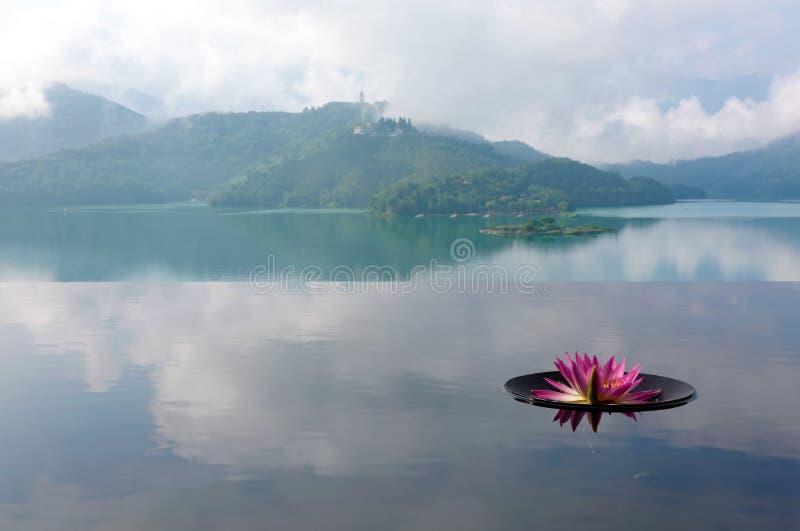 Landskap av en lotusblomma som blommar på en oändlighetspöl och dimmiga berg i bakgrund fotografering för bildbyråer