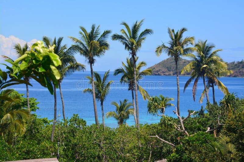 Landskap av Fiji royaltyfria foton