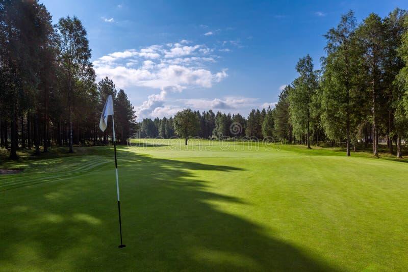 Landskap av golffältet med hålflaggan på förgrund arkivfoto