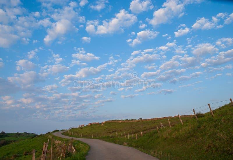 Landskap av gröna fäktade ängar, vägen och blå himmel med moln royaltyfri fotografi