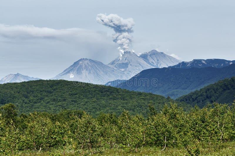 Landskap av Kamchatka: aktiv Zhupanovsky för utbrott vulkan royaltyfria bilder