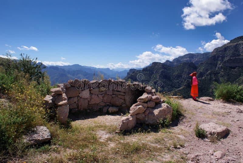 Landskap av kopparkanjoner i chihuahuaen, Mexico fotografering för bildbyråer