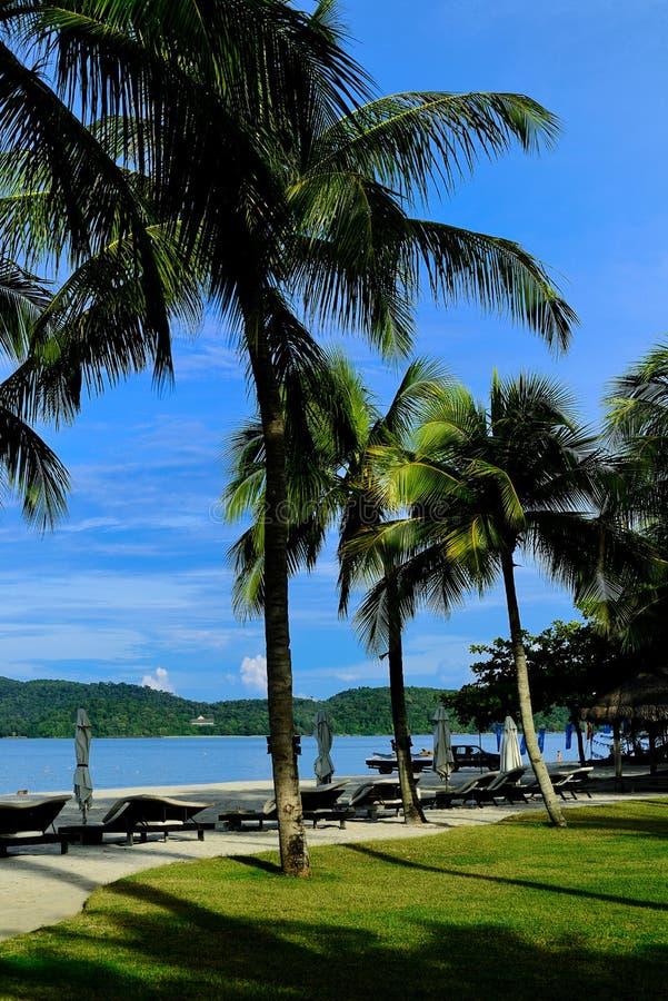 Landskap av Langkawi fotografering för bildbyråer