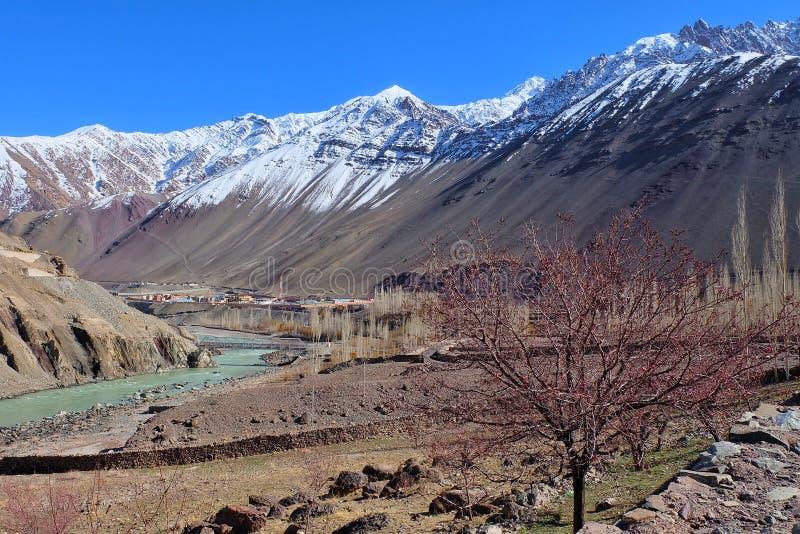 Landskap av Leh, Ladakh, Indien arkivfoto