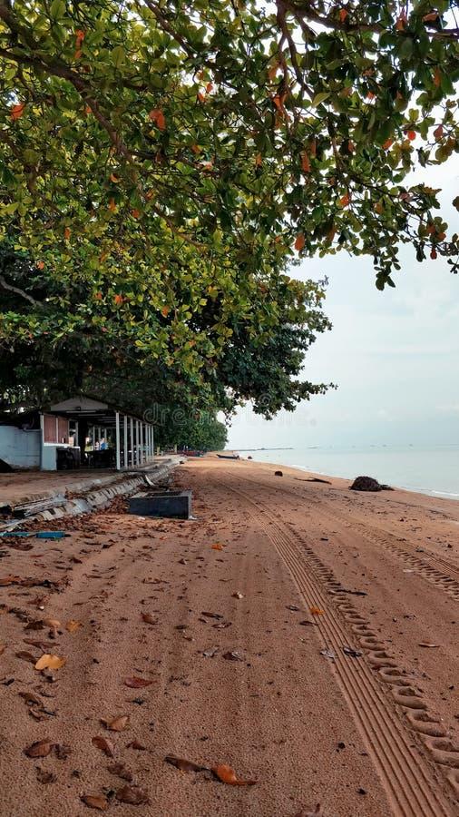 Landskap av Pantai Pengkalan Balak Melaka royaltyfri bild