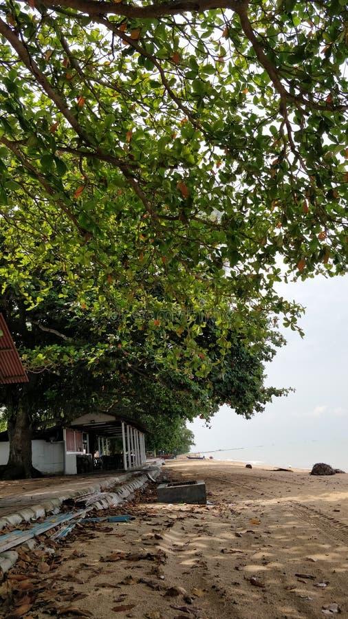 Landskap av Pantai Pengkalan Balak Melaka arkivbild