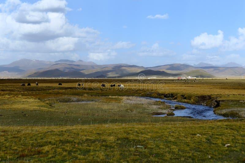 Landskap av Qilian berg arkivbild