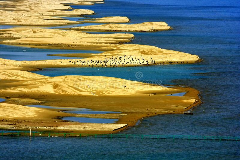 Landskap av Qinghai sjön royaltyfri foto