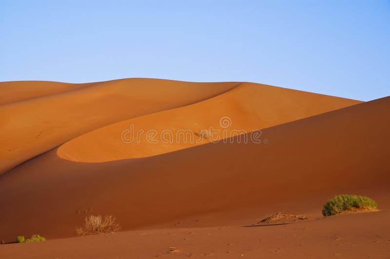Landskap av sanddyn i öknen av Rub` Al Khali fotografering för bildbyråer