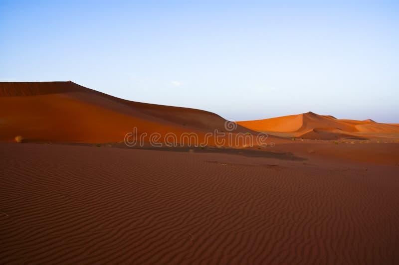 Landskap av sanddyn i öknen av Rub` Al Khali arkivfoto