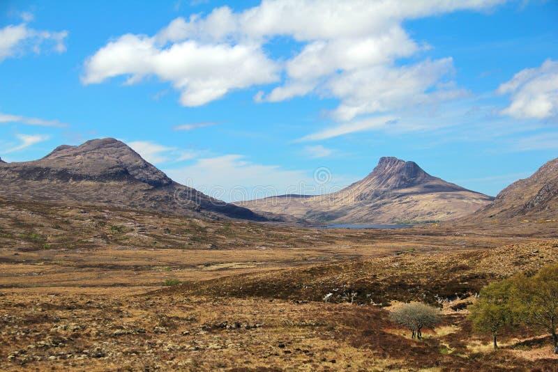 Landskap av savannahen arkivbild