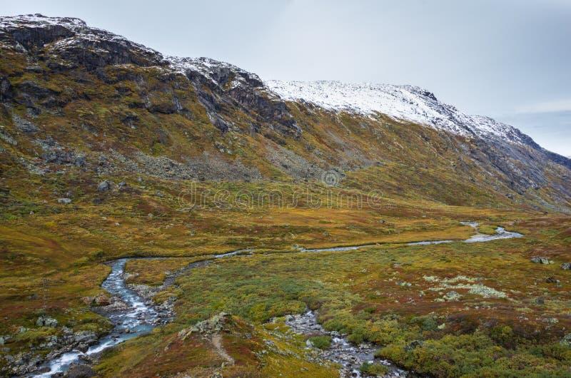 Landskap av snöig bergskedja och en is- flod i Norge arkivbild