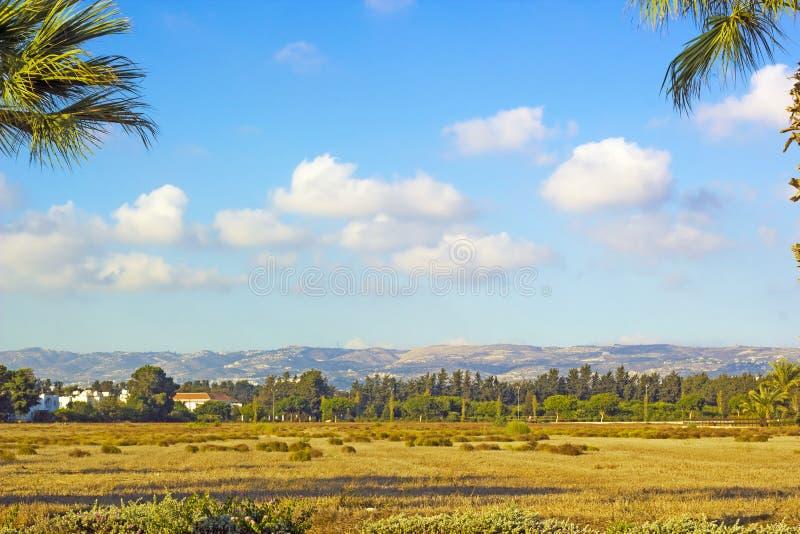Landskap av staden Paphos med hus, träd och berg i bac royaltyfria foton