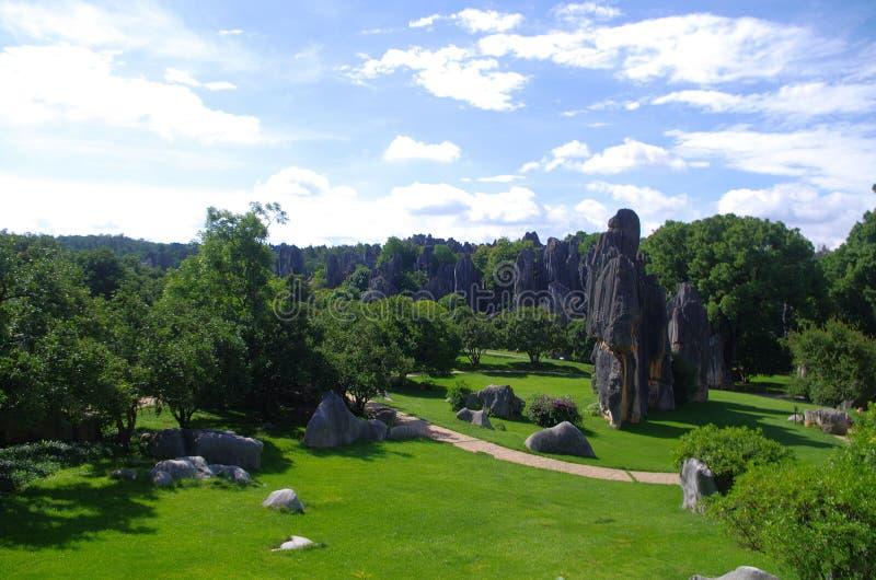 Landskap av stenskogen i det Yunnan landskapet arkivbild
