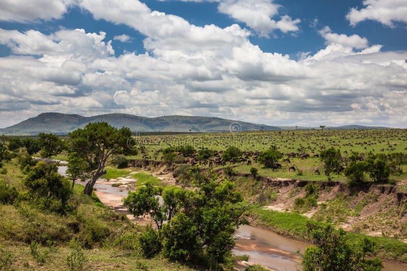 Landskap av Tanzania arkivbild