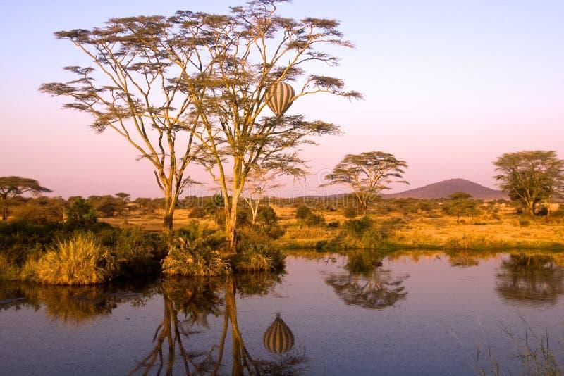 Landskap av Tanzania royaltyfria bilder