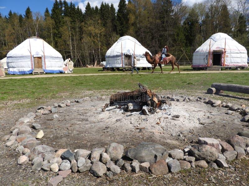 Landskap av traditionella nomad- hem för yurt för västra Mongolians på stäppen med härlig bakgrund för blå himmel arkivbild