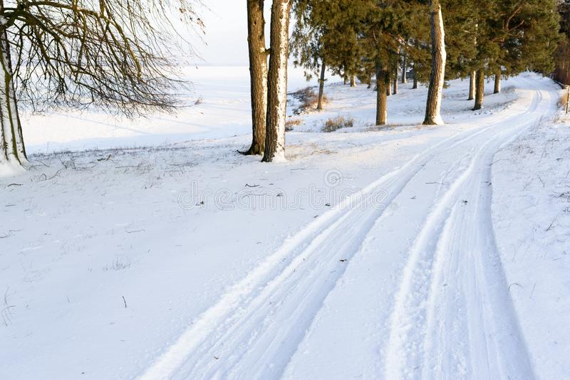 Landskap av vägen i skogen som täckas av snö Bilen spårar i D royaltyfria bilder
