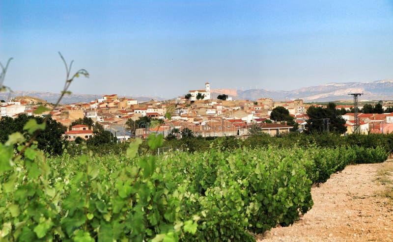 Landskap av vingårdar i Jumilla, Murcia landskap royaltyfri fotografi