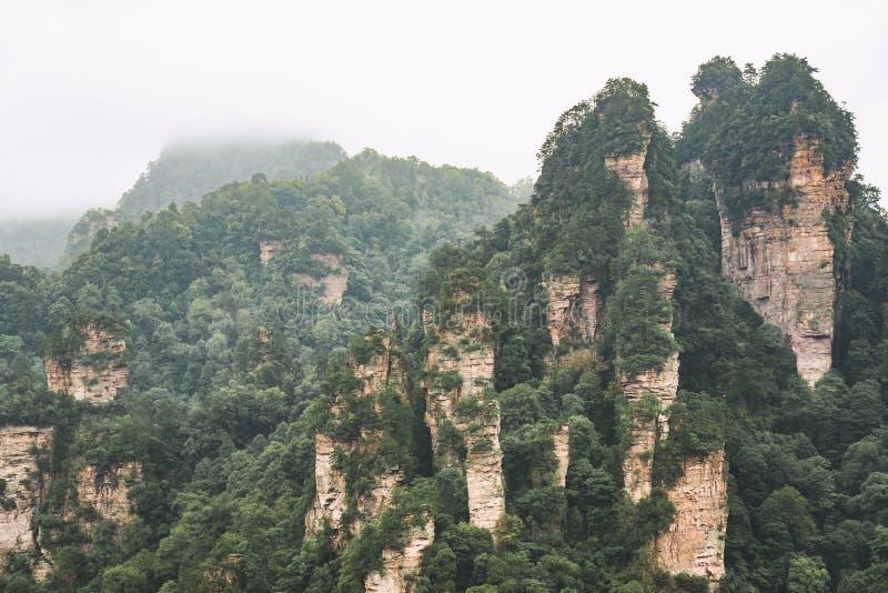 Landskap av Zhangjiajie Lokaliserat i Wulingyuan sceniskt och historiskt intresseområde som designerades ett UNESCOvärldsarv arkivfoton