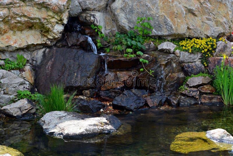 Landskap dammet fotografering för bildbyråer