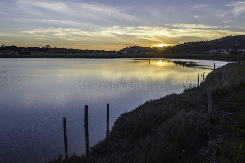 Landskap Diaccia Botrona för naturlig reserv royaltyfri foto