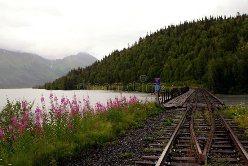 Landskap för Alaska järnvägbro royaltyfri foto