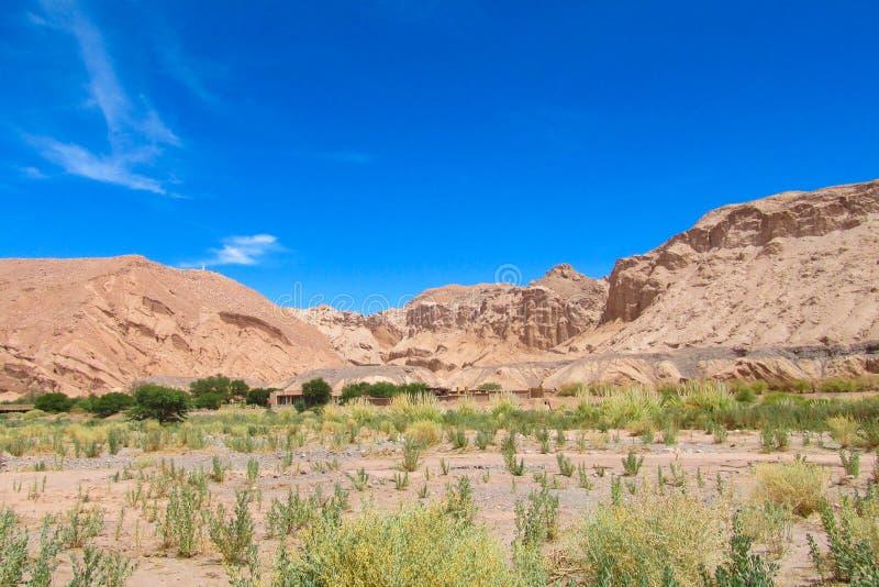 Landskap för Atacama öken royaltyfri fotografi