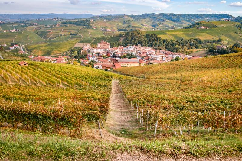 Landskap för Barolo - Langhe e Roero vingårdhöst arkivfoto