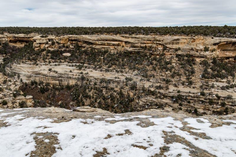 Landskap för berg för öken för Mesa-verdenationalpark royaltyfri foto