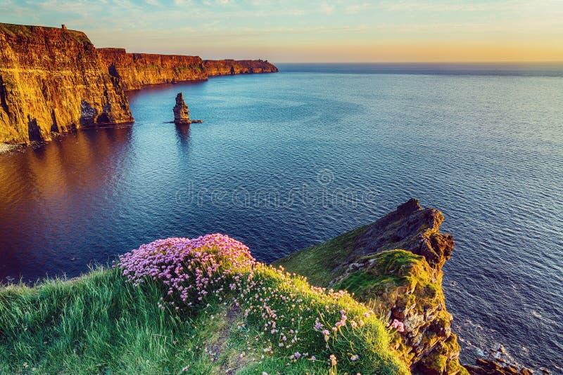 Landskap för bygd för härlig tappningstil sceniskt irländskt från klipporna av moher i Irland arkivfoto