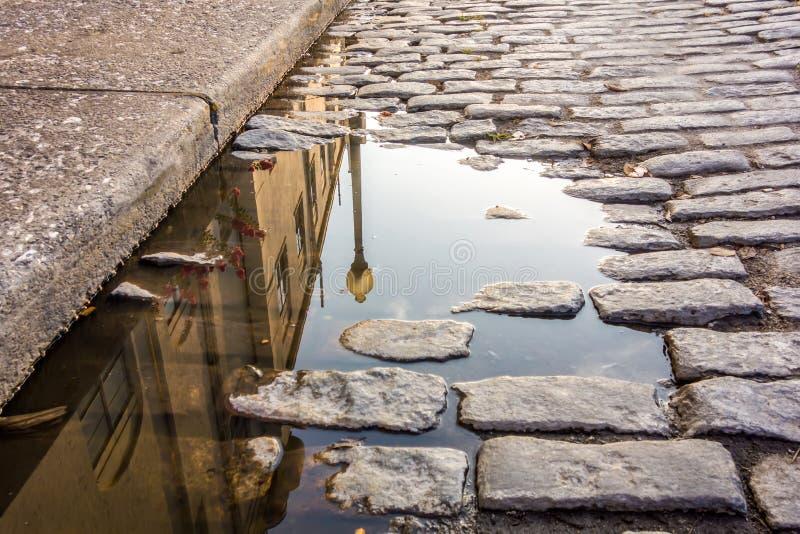 Landskap för gata för Savannahgeorgia flod royaltyfri foto
