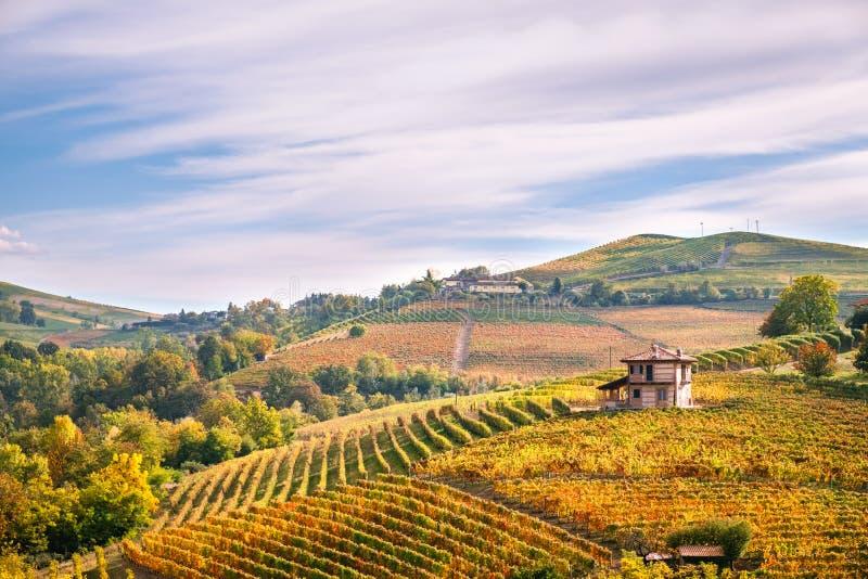 Landskap för Langhe Barolo vingårdkullar, Piedmont, Italien fotografering för bildbyråer