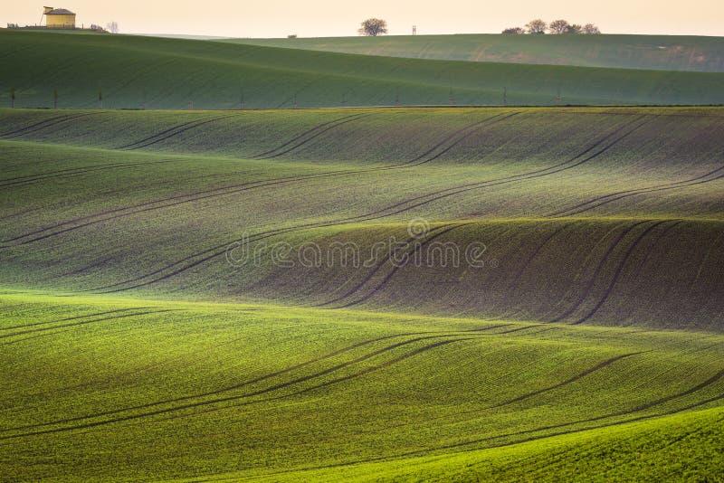Landskap för Moravian vårrullning arkivfoton